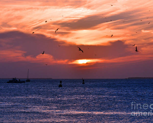 Key West Florida Poster featuring the photograph Sunset Key West by Davids Digits