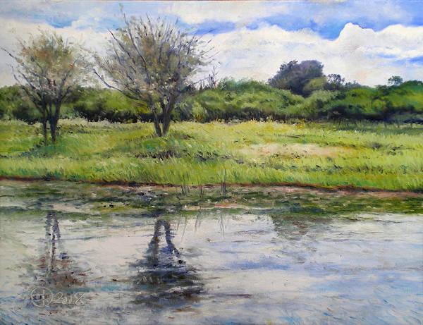 Maun Botswana Poster featuring the painting Thamalakane River At Maun Botswana 2008 by Enver Larney