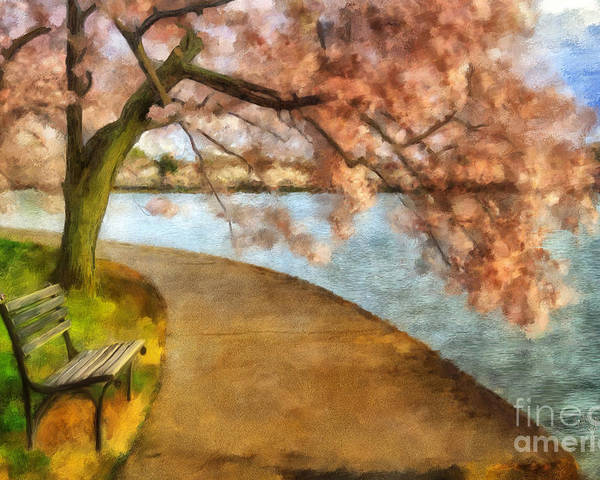 Landscape Poster featuring the photograph The Cherry Blossom Festival by Lois Bryan