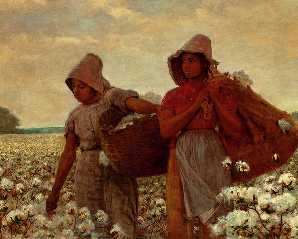 The Cotton Pickers Poster featuring the painting The Cotton Pickers by Winslow Homer