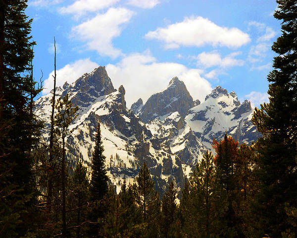 Photography Poster featuring the photograph The Grand Tetons by Susanne Van Hulst