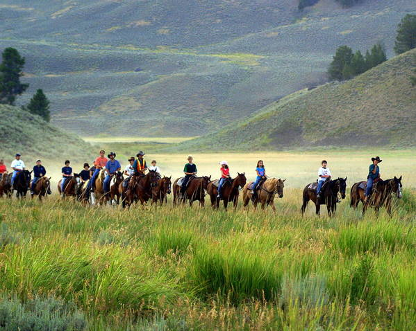 Trail Ride Poster featuring the photograph Trail Ride by Marty Koch