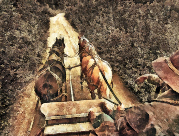 Cowboy Poster featuring the painting Travel by Naman Imagery