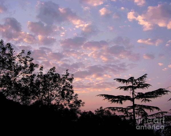 Sunset Poster featuring the photograph Twilight by Sunaina Serna Ahluwalia