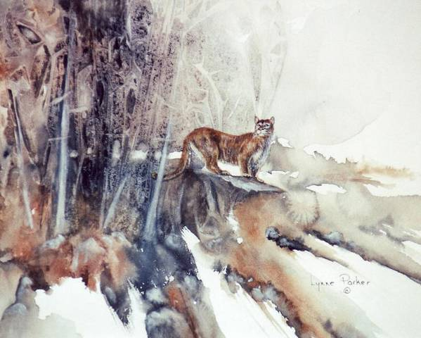 Cougar Poster featuring the painting Vantage Point by Lynne Parker