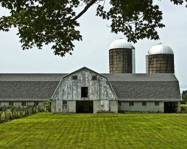 Barn Poster featuring the photograph Vienna Barn 2 by Pat Carosone