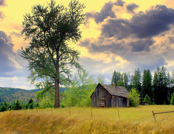 Washington Poster featuring the photograph Washington Homestead by Marty Koch