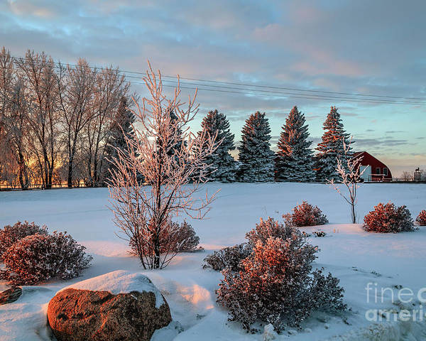 Winter Poster featuring the photograph Winter Sunset In Weyburn by Viktor Birkus