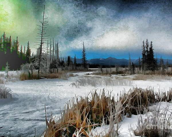 Marsh Poster featuring the photograph Winters Marsh by Roland Stanke