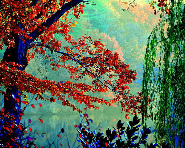 Lake View Poster featuring the digital art Autumn Colors by Aron Chervin