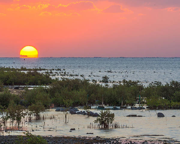 Hdr Poster featuring the photograph Red Sea Sunset by Lik Batonboot