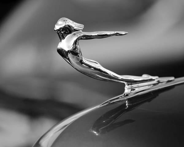 1936 Cadillac Poster featuring the photograph 1936 Cadillac Hood Ornament 3 by Jill Reger