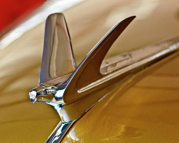 1949 Chevrolet Fleetline Deluxe Sedan Poster featuring the photograph 1949 Chevrolet Fleetline Hood Ornament by Jill Reger