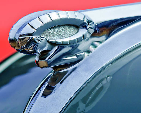 1950 Dodge Coronet Poster featuring the photograph 1950 Dodge Coronet Hood Ornament by Jill Reger