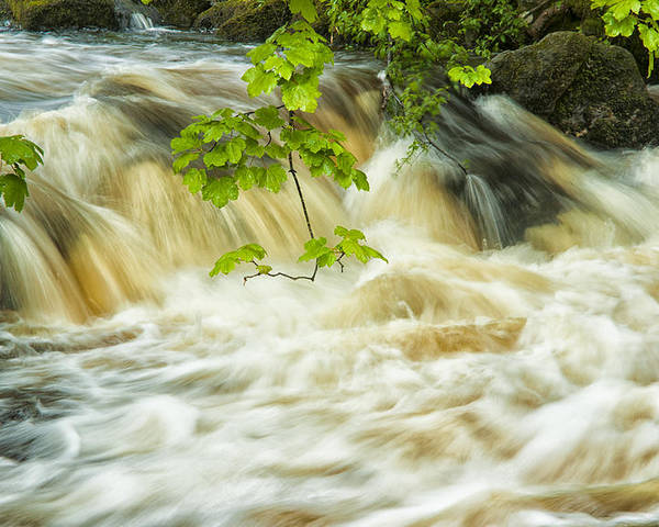 Aira Force Poster featuring the photograph Aira Force by Paul Cullen