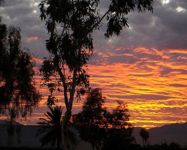 Arizona Poster featuring the photograph Arizona Sunset by Lessandra Grimley