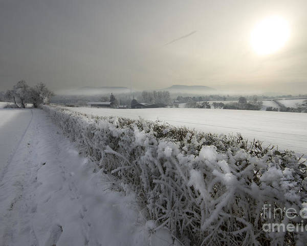 Winter Poster featuring the photograph Frozen Britain by Angel Tarantella