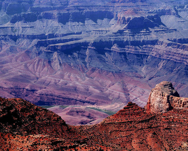 Grand Canyon Poster featuring the photograph Grand Canyon View by Susanne Van Hulst