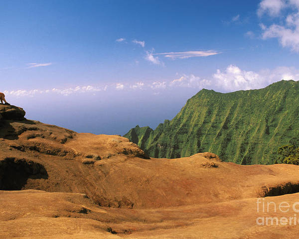 Above Poster featuring the photograph Na Pali Coast by Peter French - Printscapes