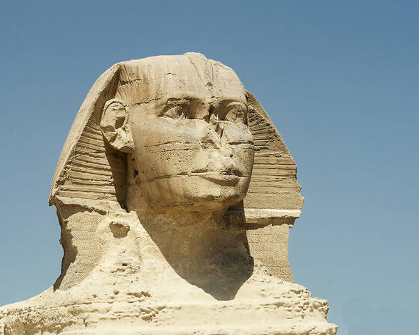 Egypt Poster featuring the photograph Sphinx At Gisa, Egypt by David Henderson