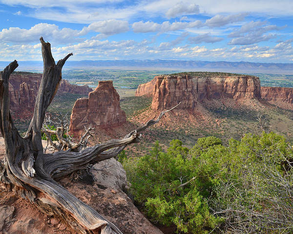 Colorado National Monument Poster featuring the photograph Colorado National Monument by Ray Mathis