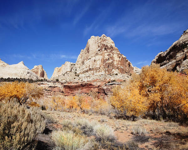Red Rock Poster featuring the photograph Capitol Reef National Park by Mark Smith