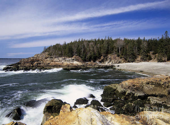 Atlantic Ocean Poster featuring the photograph Acadia National Park - Maine Usa by Erin Paul Donovan