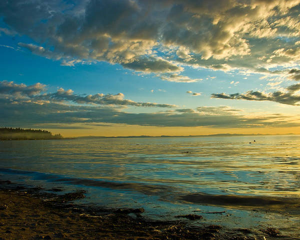 Poster featuring the photograph Birch Bay by JK Photography