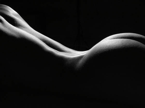 Black And White Poster featuring the photograph Black And White Nude by David Quinn