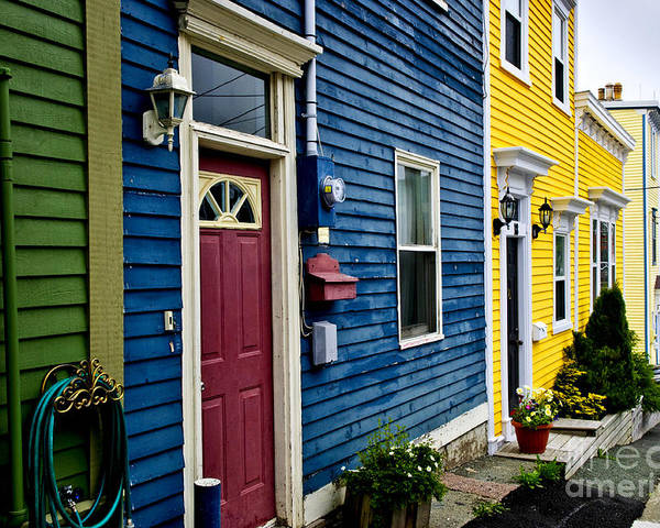 Houses Poster featuring the photograph Colorful Houses In St. John's by Elena Elisseeva