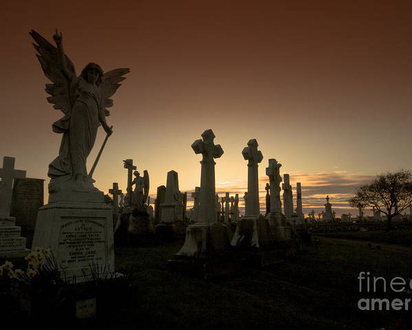 Angel Poster featuring the photograph The Graveyard by Angel Ciesniarska