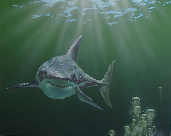 Shark Poster featuring the painting Untitled 3 by Philip Fleischer