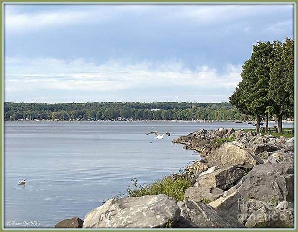 Lake Poster featuring the photograph Waters Edge by Rennae Christman