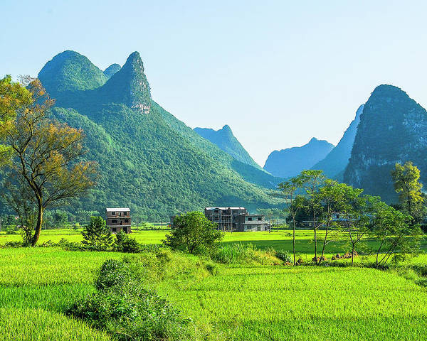 Karst Poster featuring the photograph Rural Scenery In Summer by Carl Ning