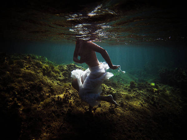 Swim Poster featuring the photograph 4 by Gemma Silvestre