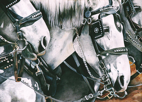 Percheron Poster featuring the painting 4 Grays by Nadi Spencer