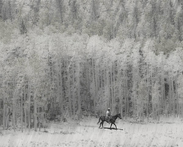 Cowboy Poster featuring the photograph 4147 by Peter Holme III