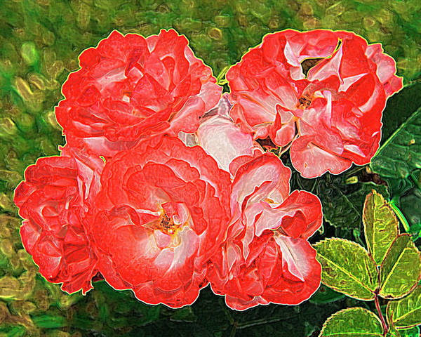Rose Poster featuring the painting Rose by Alessandro Matarazzo