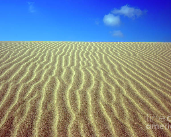 Sand Poster featuring the photograph Desert by MotHaiBaPhoto Prints