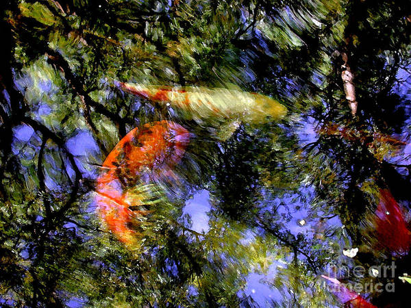 Koi Poster featuring the photograph The Koi Pond by Marc Bittan