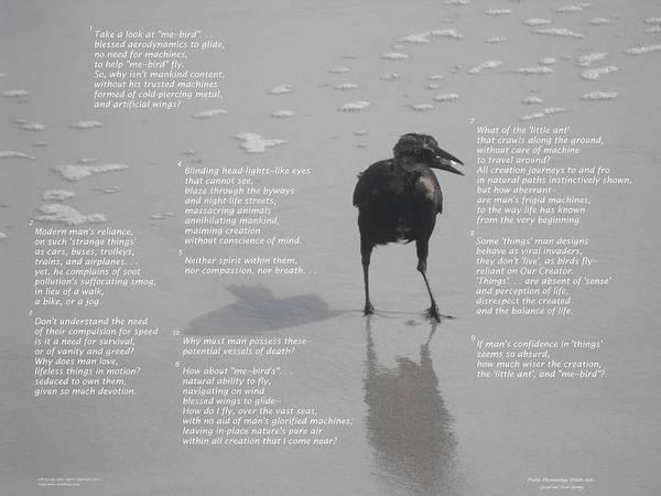Modern Era Poster featuring the photograph A Bird's Eye View--point by Tonya Woodbury Sloan