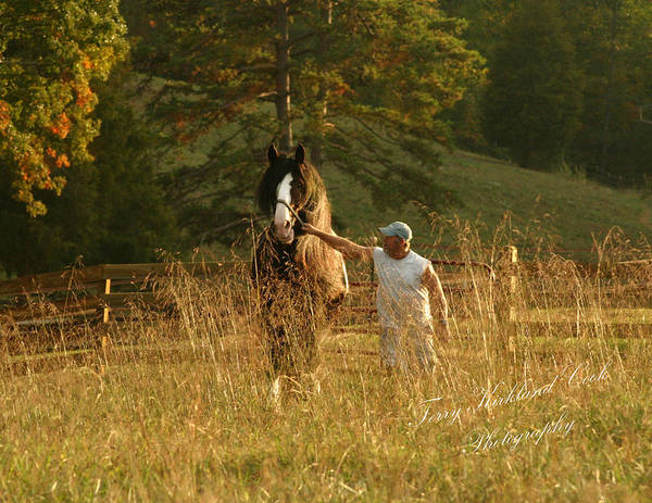 Horse Poster featuring the photograph A Man And His Horse by Terry Kirkland Cook