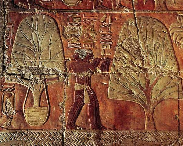 Outdoors Poster featuring the photograph A Relief Of Men Carrying Myrrh Trees by Kenneth Garrett