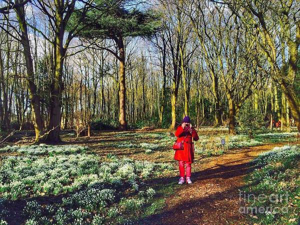 Snowdrops Poster featuring the photograph A Selfie In Snowdrop Wood by Joan-Violet Stretch