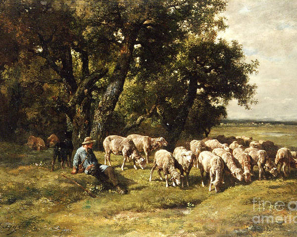 A Shepherd And His Flock Poster featuring the painting A Shepherd And His Flock by Charles Emile Jacques