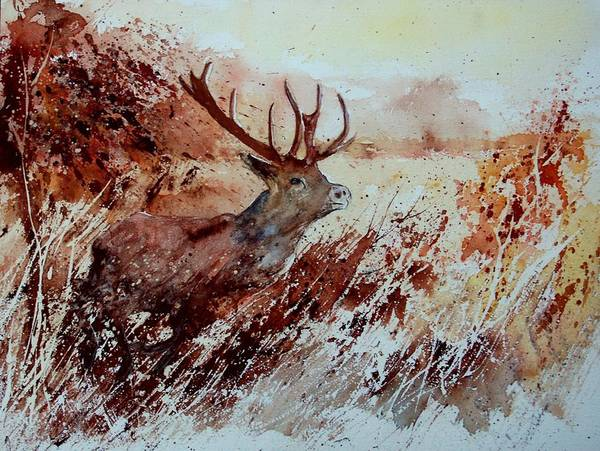 Animal Poster featuring the painting A Stag by Pol Ledent