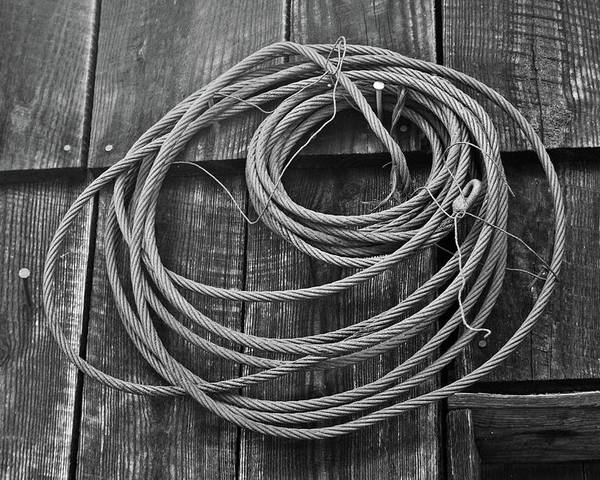 Wire Poster featuring the photograph A Study Of Wire In Gray by Douglas Barnett