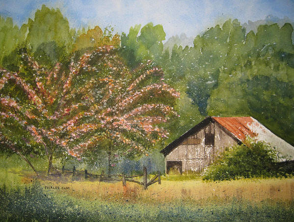 Mimosa Trees Poster featuring the painting Abandoned Mimosas by Shirley Braithwaite Hunt