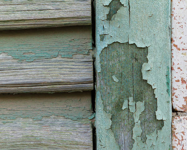 Cyprus Poster featuring the photograph Abstraction In Peeling Paint Close-up by Iordanis Pallikaras