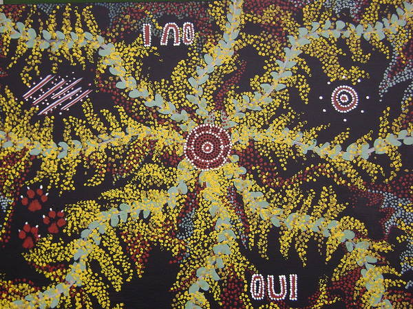 Acacia Blossoms Poster featuring the painting Acacia Blossoms In Oz by Laura Johnson